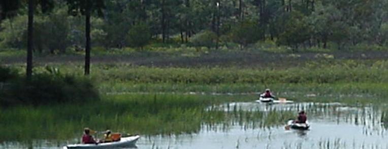 Kayak - Hilton Head Island SC